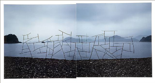 artwork_images_424196454_222781_andy-goldsworthy